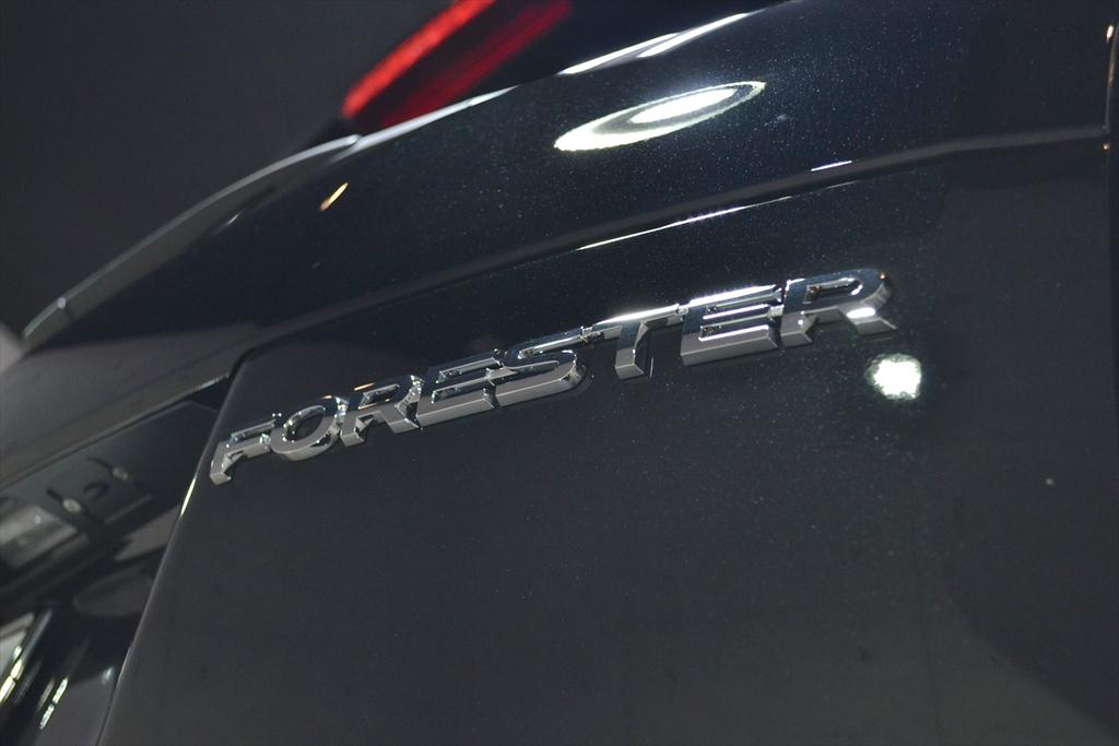 フォレスター 黒-7
