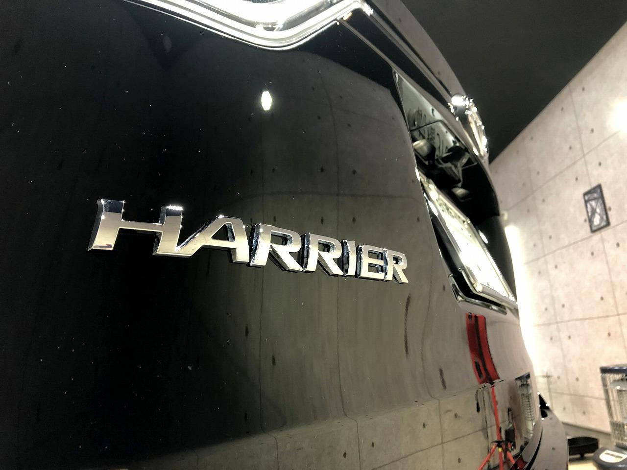 harrier_Bla_007
